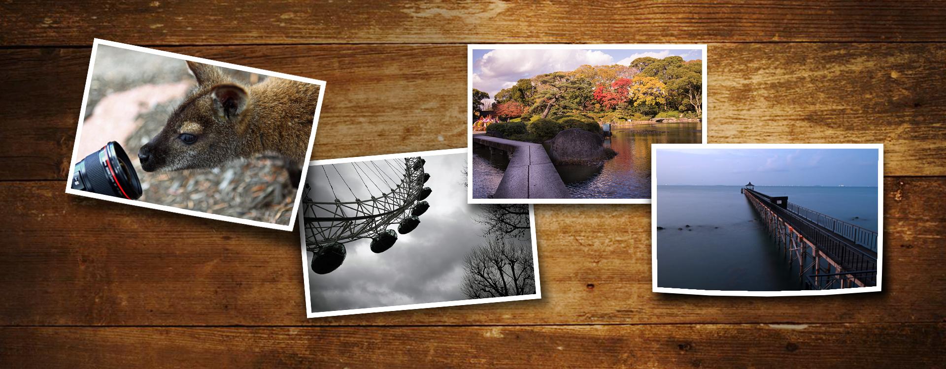 Canon Image Gateway - Canon India