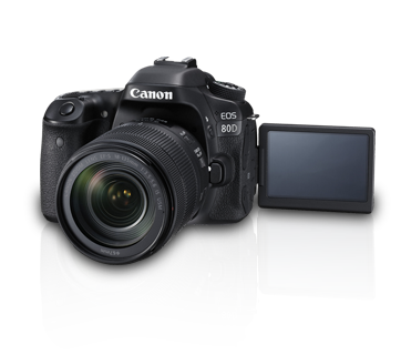 EOS80D_kitii_b6.png